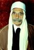 سلطان باشا الاطرش